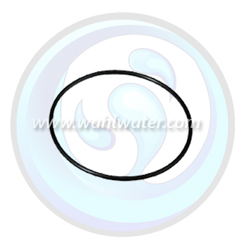 O-Ring Watts Flowmatic Filter Housings | OR4