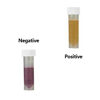 Bacteria Vials