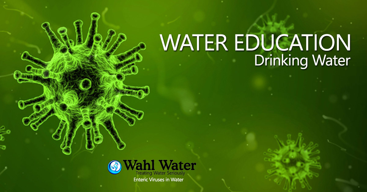 Enteric Viruses in Water