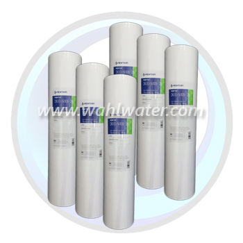 Pentek DGD-5005-20 Sediment Filter Case of 6 | 155358-43
