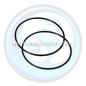 Absolute H2O Set of 2 O-Rings| Double O-Ring Housing | WW029