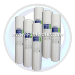 Pentek DGD-2501-20 Sediment Filter Case of 6 | 155360-43