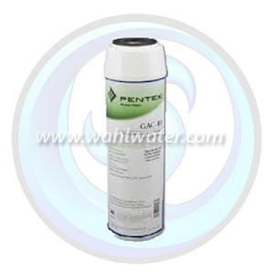 Pentek GAC-10 Granular Activated Carbon Filter | 155109-43