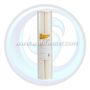 Pentek ECP20-20BB Pleated Sediment Filter | 255495-43