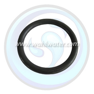 O-Ring Viqua | Sterilight | R-Can | 410867