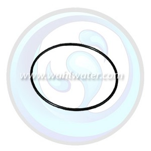 O-Ring Viqua | Sterilight | R-Can | 410959-R