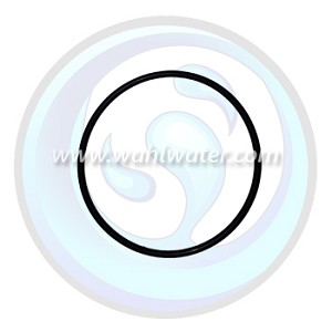 Wedeco Replacement Glow Cap O-Ring | AQ36617